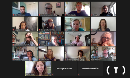 Image from the Zoom screen of the attendees of the inaugural Tinnitus Research Network