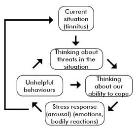 Diagram of the stress cycle