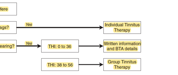 Decision-making aid developed at the Norfolk and Norwich University Hospital which assigns individuals with tinnitus to different treatment pathways based on their THI, red flag symptoms and hearing loss according to PTA. Abbreviations: THI: Tinnitus